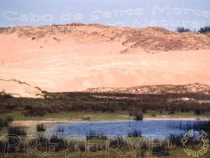 Aquífero inter dunar, ponto de captação da CASAN. Arq. Rasgamar